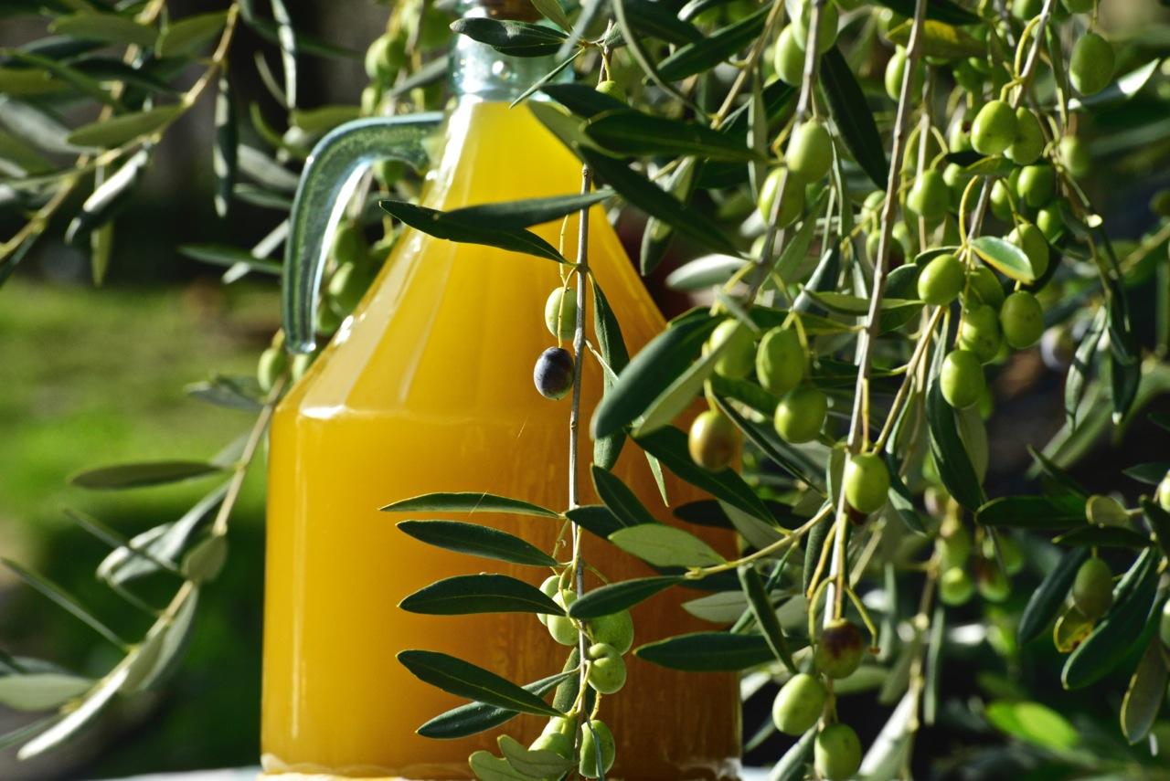 L'Huile d'Olive de la Riviera Ligure